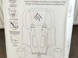 Friendships combination car seat