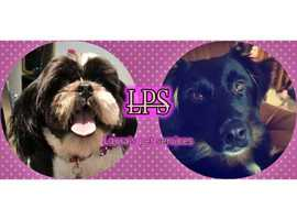 Laura's Pet Services Bishopbriggs