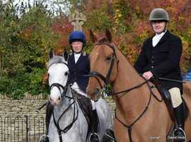 Horse Liveries in Gloucestershire
