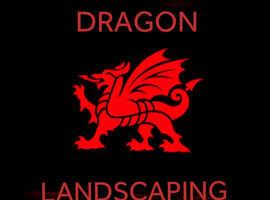 Dragon landscaping
