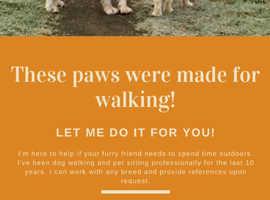 Professional Dog Walker Cumbernauld area