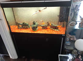 3 ft black fluval fish tank with cabinet