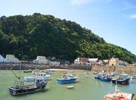 Seaview Holiday Apartment for Hire in Minehead