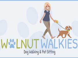 Walnut Walkies  Three 30min walks per week £20  1 hour Solo walk £10  Sleepover £20 per night £30 2dogs from same family