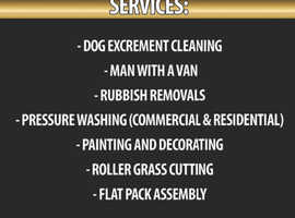 Dog excrement cleaning services