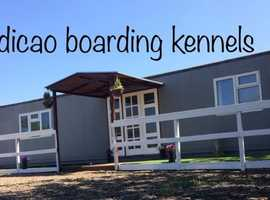 Residential Dog Training and Luxury Boarding Kennels