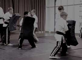 A WHOLE WEEK OF FREE MARTIAL ART LESSONS FOR EVERYONE