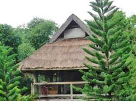 House and Lot for sale or lease in Puerto Princesa Palawan Philippines