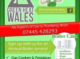 Summer holiday Boiler Service Deal. £35
