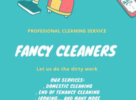 Professional Domestic Cleaning Service in London
