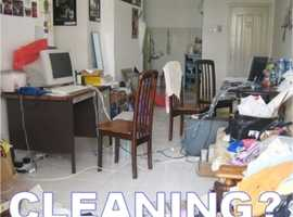 Highly Experienced Domestic Cleaner