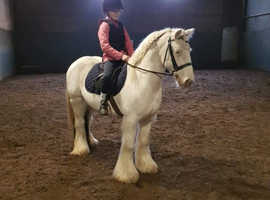 FOR SALE Mothers dream kids pony