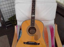 Fender roy emory electro acoustic