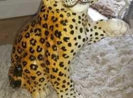 antique italian leopard Cub