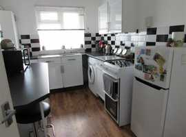 One bed flat available to rent. Kingsbridge.
