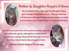 Mother & Daughter to be homed together