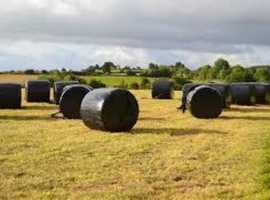 HAYLAGE QUALITY 100%