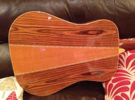 1970s Kimbara 12 string