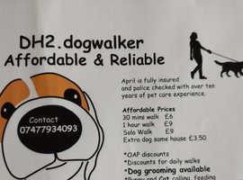 DH2.dogwalker