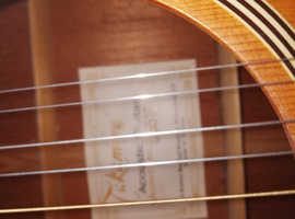 Takemine g series guitar