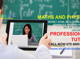Professional Maths and Physics Tutor Online or in Person