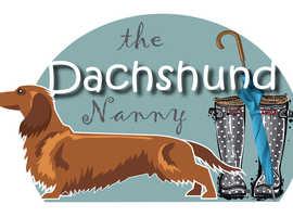 The Dachshund Nanny Home Boarding