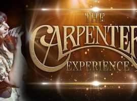 Carpenters Tribute night