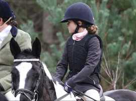Beautiful safe horses & ponies available to ride in Arborfield - Berkshire