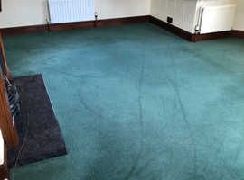 Pure Wool Carpet in very good condition