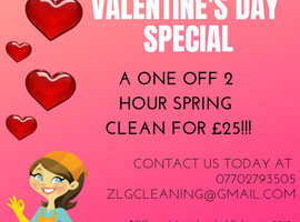 ZLG CLEANING SERVICE