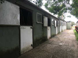 4 stables & paddock available