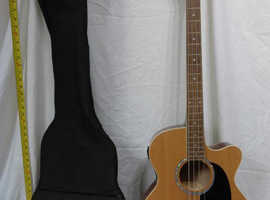 Spider electro/acoustic bass