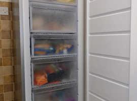 Reliable Hotpoint FZFM171G freezer