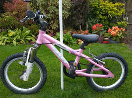 LUNA Carrera children's bike