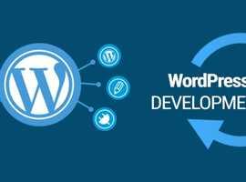 I Will Develop Website In Wordpress