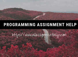 Programming disciplines covered by programming experts online|AllAssignmentHelp