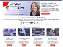 Website Repair & Problem Solving