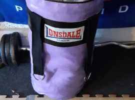 Lonsdale small punchbag