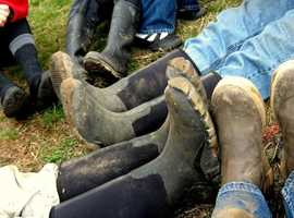 WWOOFing taster day: Norfolk - see if volunteering at over 600 hosts in the UK is for you!