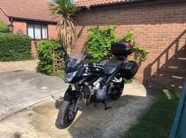 2008 Suzuki Bandit 650cc Lady Owner
