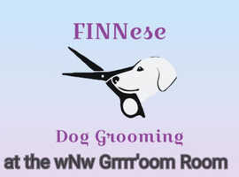 Dog Grooming with a difference FINNese at the wagNwalkies Grrrr'oom Room