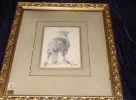 "Victorian framed pencil sketch ""The Ram""."