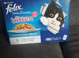 5 x boxes of felix kitten