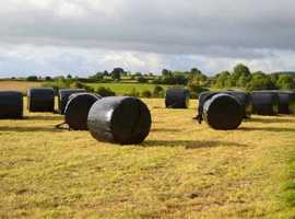 HAYLAGE - ROUND 4FT WRAP