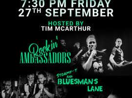 Rock 'N' Blues Charity Night