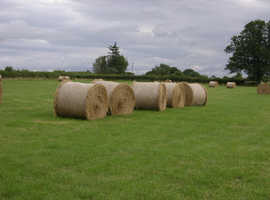 Quality Meadow Hay
