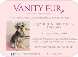 Professional Dog Grooming Salon - Haslington