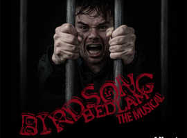 Birdsong In Bedlam - The Musical