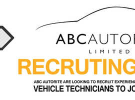 Motor Mechanics / Vehicle Technicians