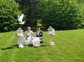 Dove Release for Weddings, Engagements, Christenings etc
